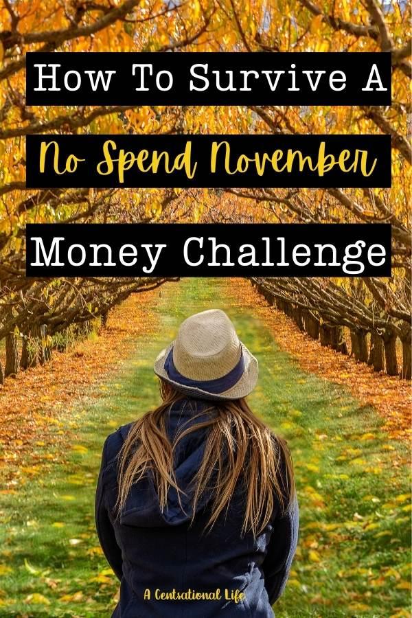 No Spend November Challenge
